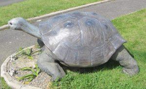 sculpture grosse tortue